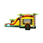 Springfield Bounce House with Slide Rentals