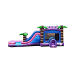 Springfield Bounce house with slide rental